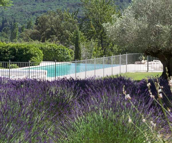 Maitre truffier dans la Drôme