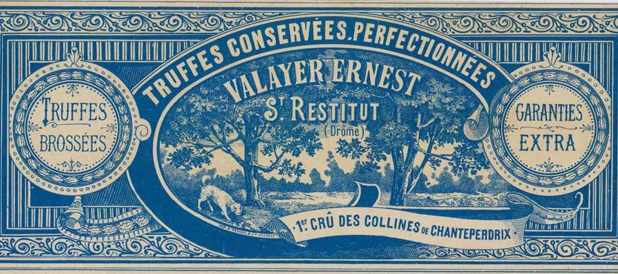 Producteur de truffes noires dans la Drôme